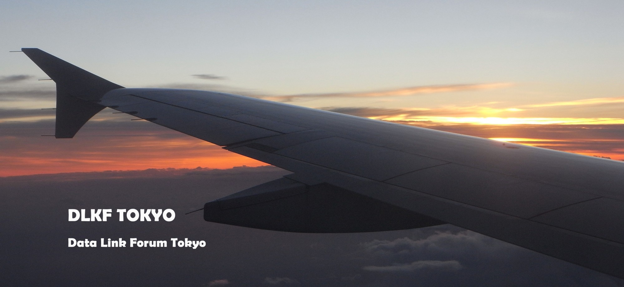 DLKF TOKYO